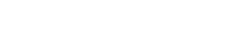 nikfinelli-logo-bianco